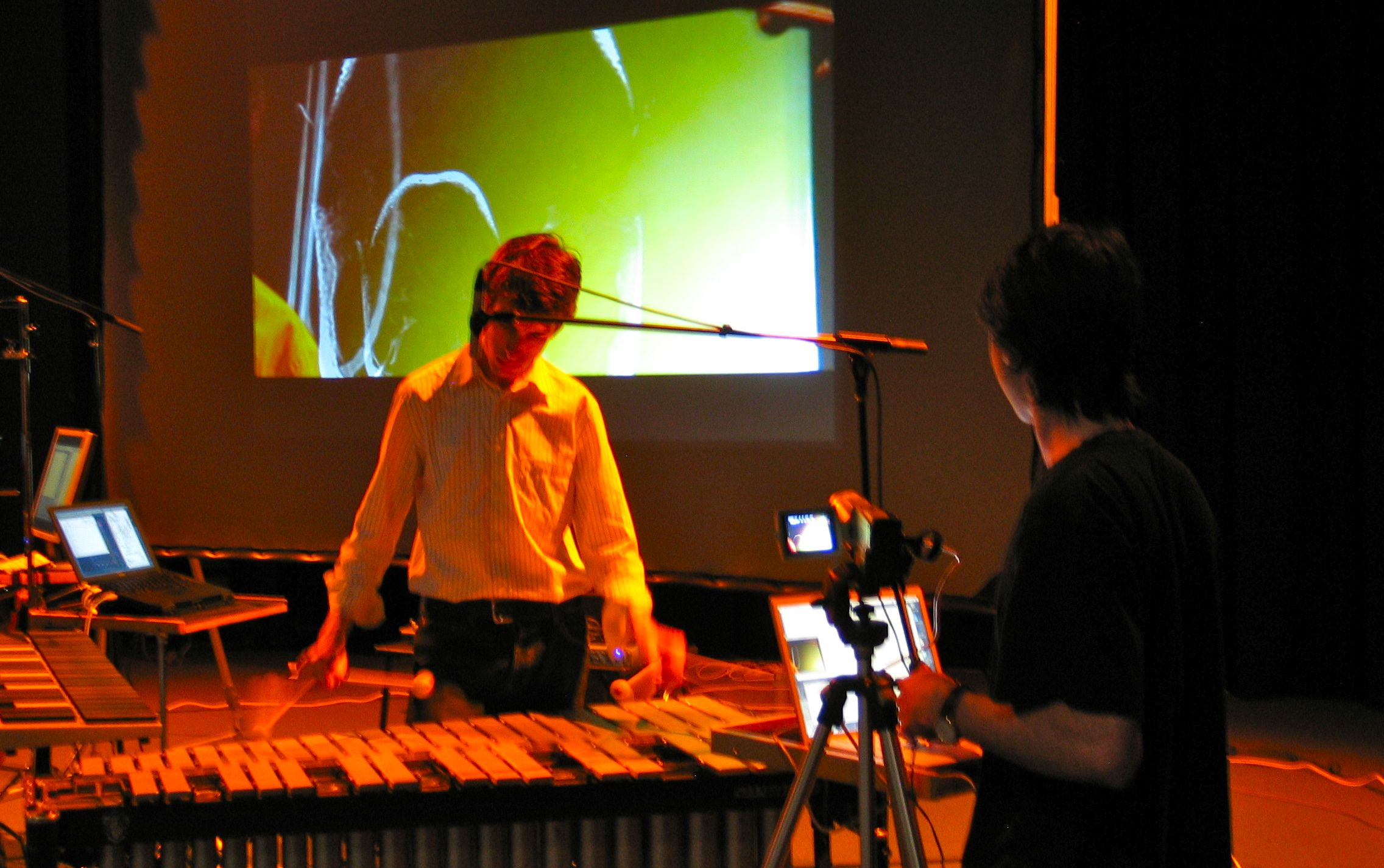 A percussion and computer performance from 2009